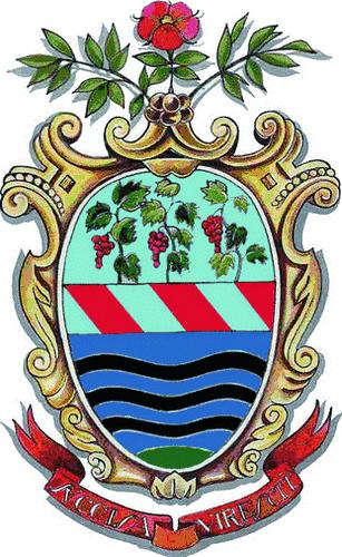 <p>Comune di Trevignano Romano</p>